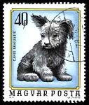 Dogs on cyberstamps
