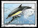 A sea of dolphin stamps